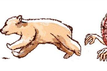 Bear cubs running