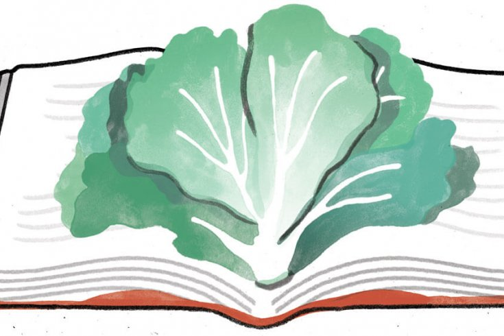 Illustration of a piece of lettuce on a book