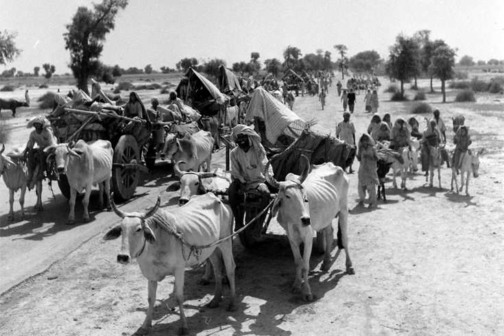 Black and white photo of people, some on ox-drawn cart, others on donkeys or walking, as they migrate, following the Partition of India, October 1947