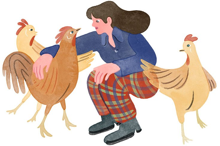 Illustration of a dark haired woman, crouching to pet a rooster. Around her are two other chickens.