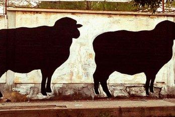 cutouts of black sheep