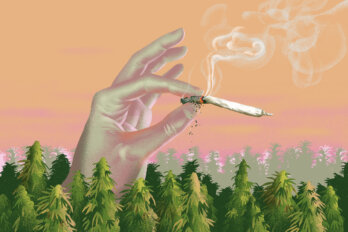 A hand emerges from a field of cannabis holding the burning end of a joint