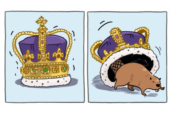 An illustration featuring two frames: the first is a bejewelled purple crown that seems to be moving and in the second, a beaver crawls out from beneath a crown.