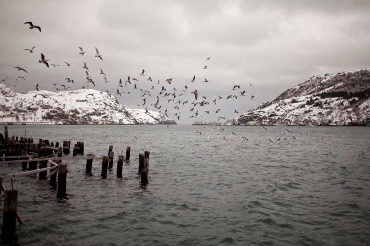 St John's, Newfoundland Harbour