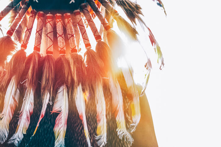The back of a feathered headdress