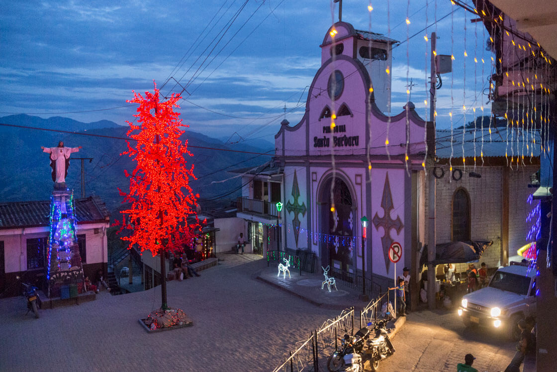 An artificial maple tree adorns Marmato's town square.
