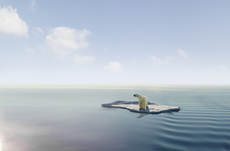 A photo of a lone polar bear on an ice sheet floating in what looks like a calm sea with a blue sky overhead.