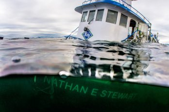 Photograph by Tavish Campbell / Courtesy of Heiltsuk Nation