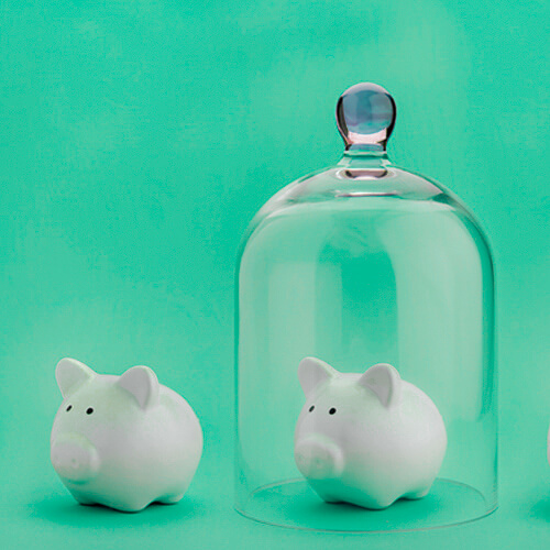 Two plastic pigs, one under a glass cover, on a green background