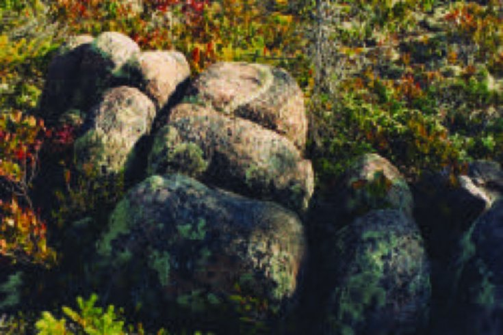 SUP_FOB_FN_Nova Scotia01
