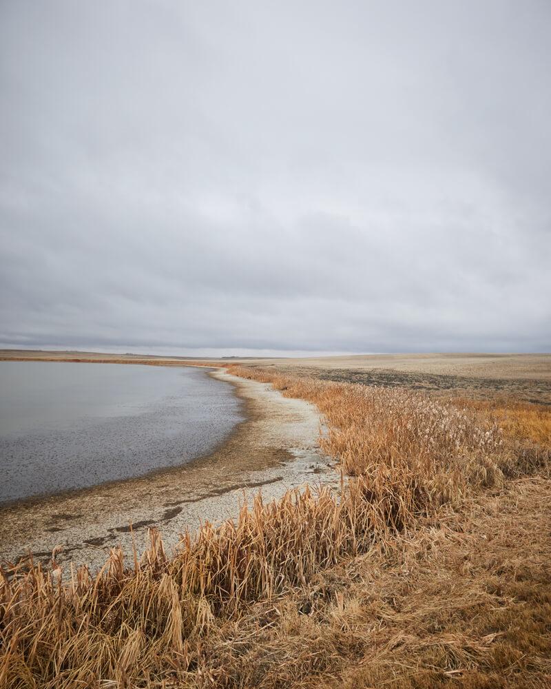 Waterline meets prairie land near Colonsay, Saskatchewan.