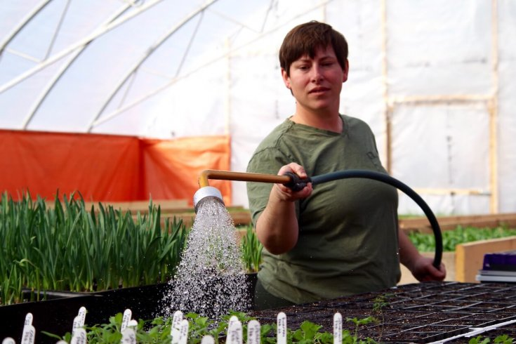 Photograph of a Woman Watering Plants Inside a Greenhouse