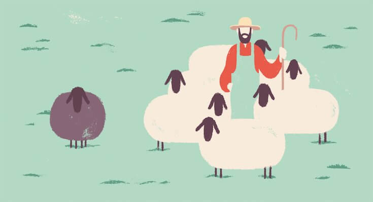 A man in the middle of white sheep with a black sheep to the side.