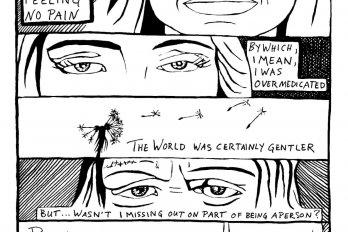 Comic by Teva Harrison