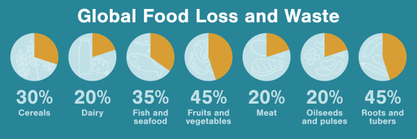 Chart of global food loss and waste